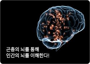 특별한 뇌과학 1·2